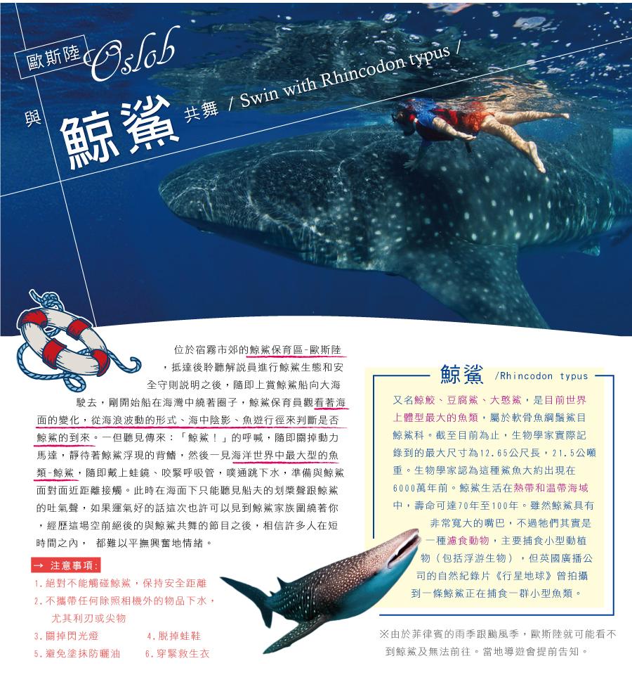 歐斯陸 鯨鯊