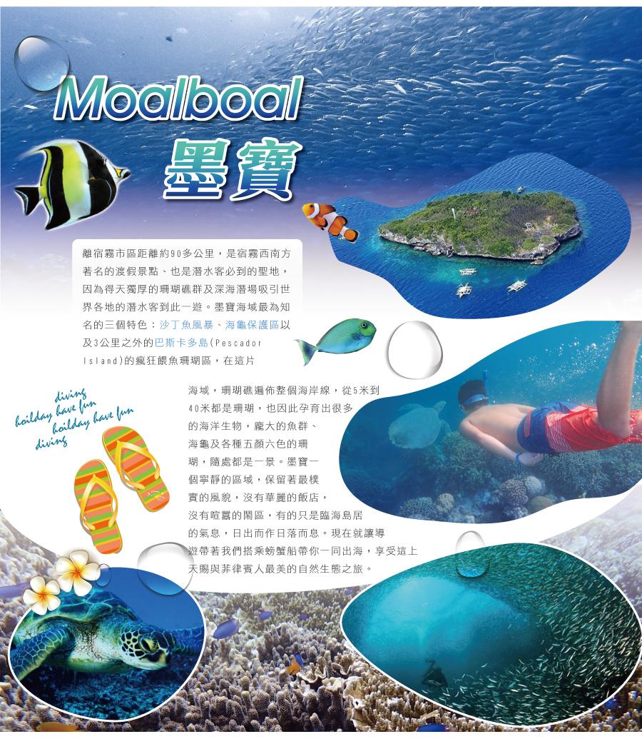 墨寶 沙丁魚風暴 海龜區 巴斯卡多島